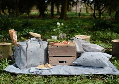 ALL8880-Chicken-Picnic-Blanket-Lifestyle-High-Res-web__image