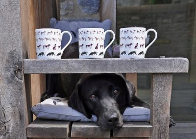 BMWA01-Walkies-Standard-Mugs-with-Nel-Landscape-Lifestyle-High-Res-e1466583594516