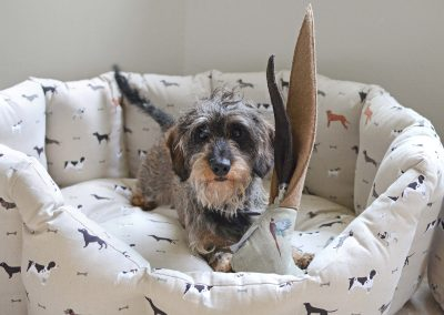 all32760-woof-large-pet-dog-bed-lifestyle-high-res-2-web__image